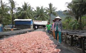Extension sur l'île sauvage de Phu Quoc (3jours/2nuits)